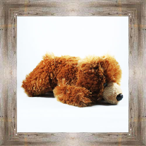 Small Grizzly Bear $9.99 #7614