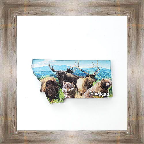Animals of Montana Magnet $6.50 #8811